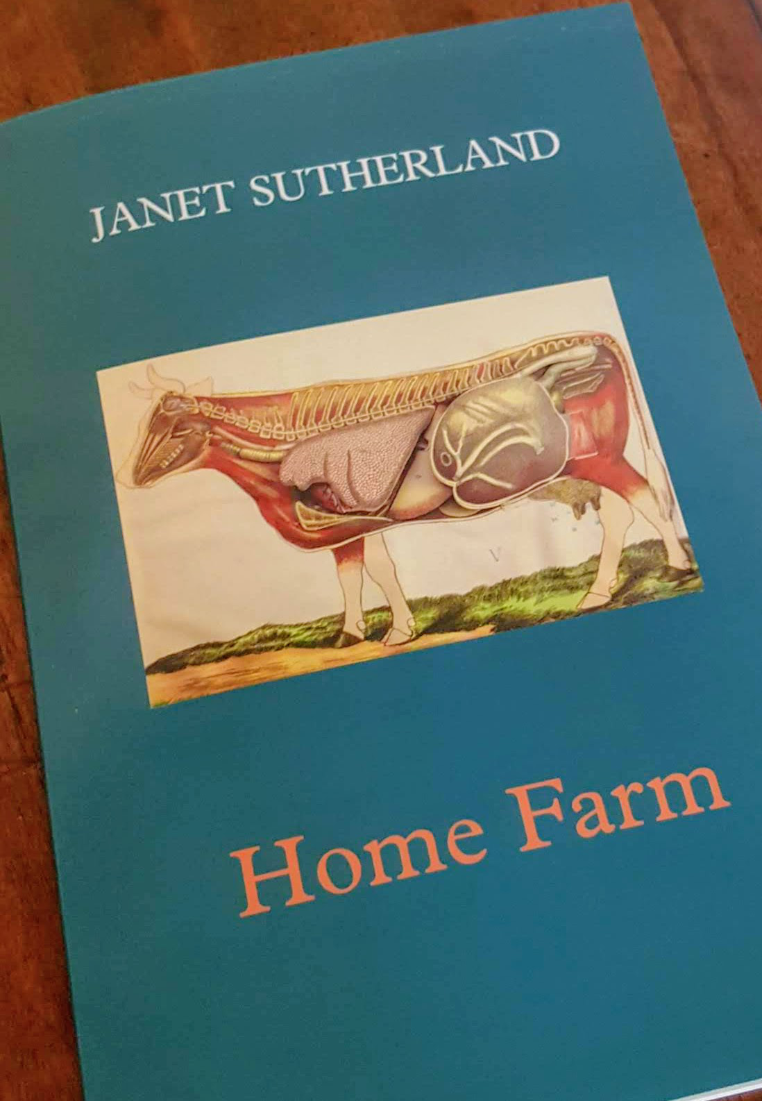 Home Farm by Janet Sutherland