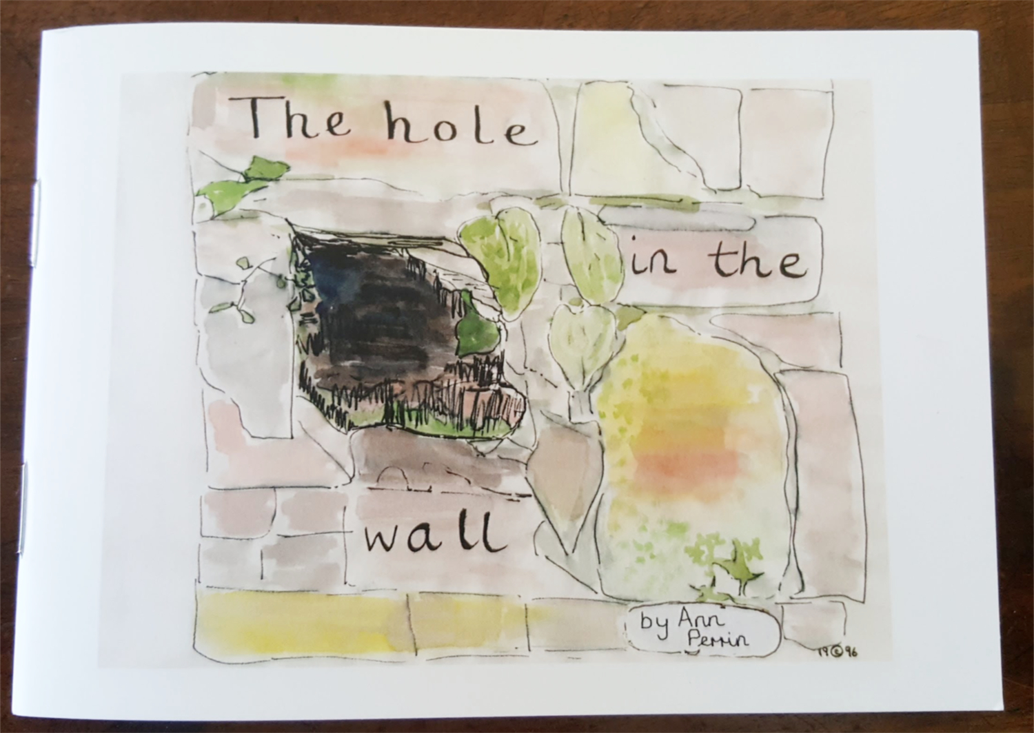 ann perrin - the hole in the wall