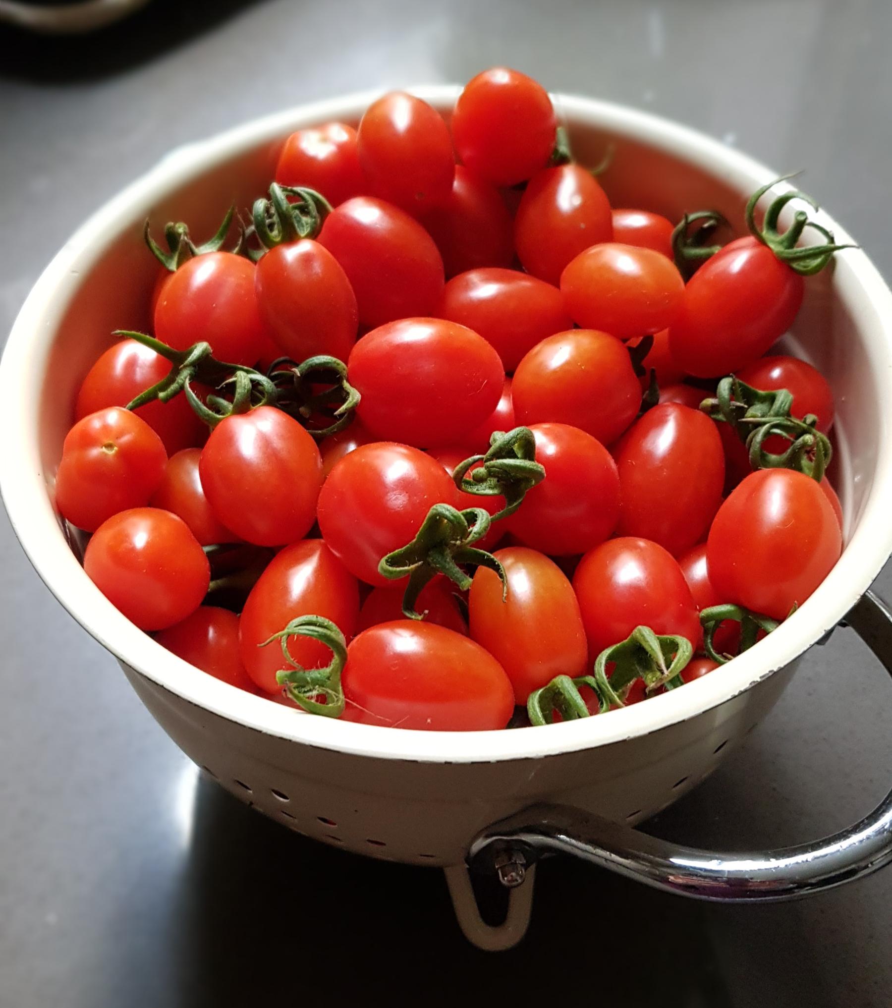 Romello tomatoes